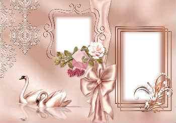 mais de 430 molduras de fotos de casamento gratis para fotomontagem